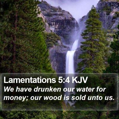 Lamentations 5:4 KJV Bible Verse Image