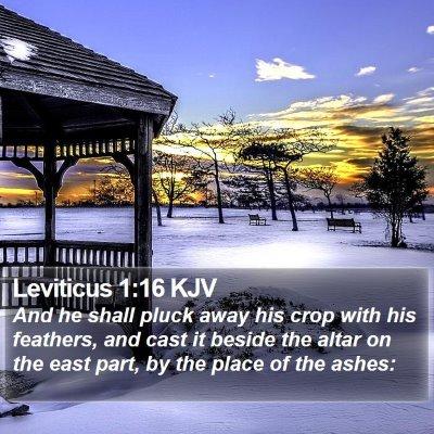 Leviticus 1:16 KJV Bible Verse Image