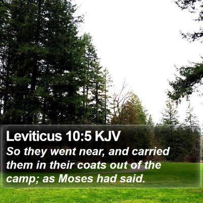 Leviticus 10:5 KJV Bible Verse Image