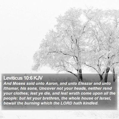 Leviticus 10:6 KJV Bible Verse Image