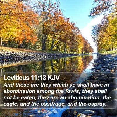 Leviticus 11:13 KJV Bible Verse Image