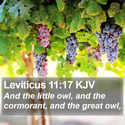 Leviticus 11:17 KJV Bible Verse Image
