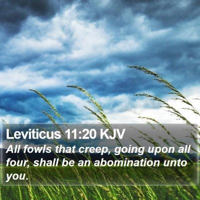 Leviticus 11:20 KJV Bible Verse Image
