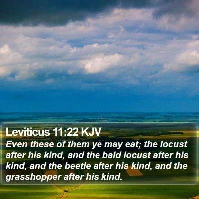 Leviticus 11:22 KJV Bible Verse Image