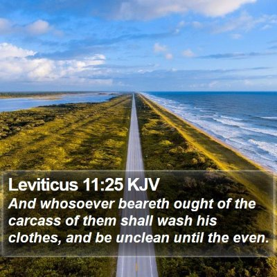 Leviticus 11:25 KJV Bible Verse Image