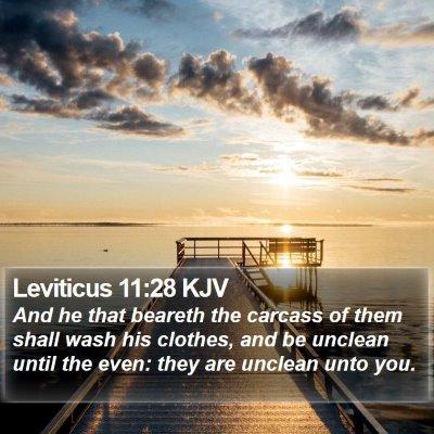 Leviticus 11:28 KJV Bible Verse Image