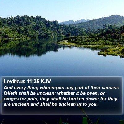 Leviticus 11:35 KJV Bible Verse Image