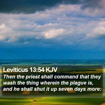 Leviticus 13:54 KJV Bible Verse Image