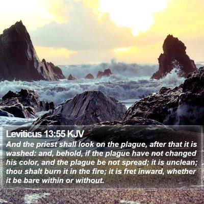 Leviticus 13:55 KJV Bible Verse Image