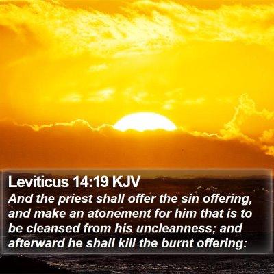 Leviticus 14:19 KJV Bible Verse Image