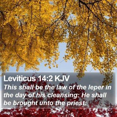 Leviticus 14:2 KJV Bible Verse Image