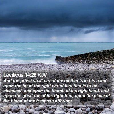 Leviticus 14:28 KJV Bible Verse Image