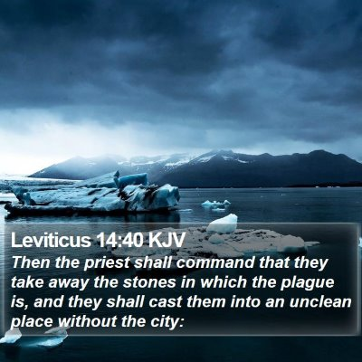 Leviticus 14:40 KJV Bible Verse Image