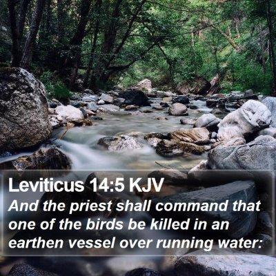 Leviticus 14:5 KJV Bible Verse Image