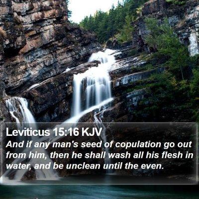 Leviticus 15:16 KJV Bible Verse Image