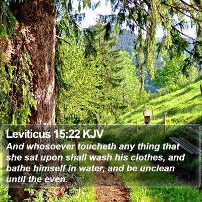 Leviticus 15:22 KJV Bible Verse Image