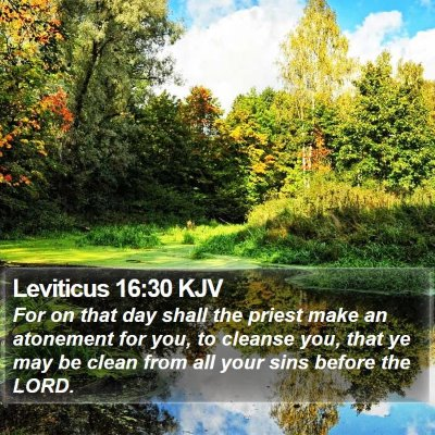 Leviticus 16:30 KJV Bible Verse Image