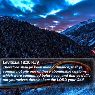 Leviticus 18:30 KJV Bible Verse Image