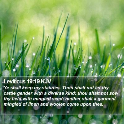 Leviticus 19:19 KJV Bible Verse Image