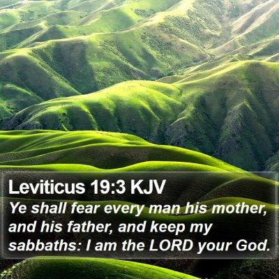 Leviticus 19:3 KJV Bible Verse Image