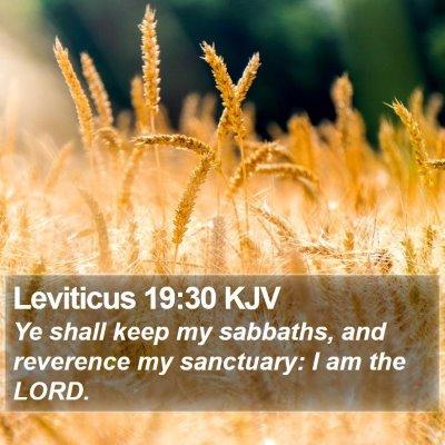 Leviticus 19:30 KJV Bible Verse Image