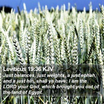Leviticus 19:36 KJV Bible Verse Image
