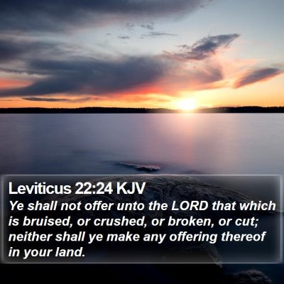 Leviticus 22:24 KJV Bible Verse Image