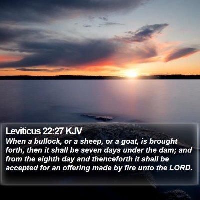 Leviticus 22:27 KJV Bible Verse Image
