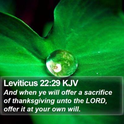 Leviticus 22:29 KJV Bible Verse Image