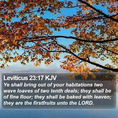 Leviticus 23:17 KJV Bible Verse Image