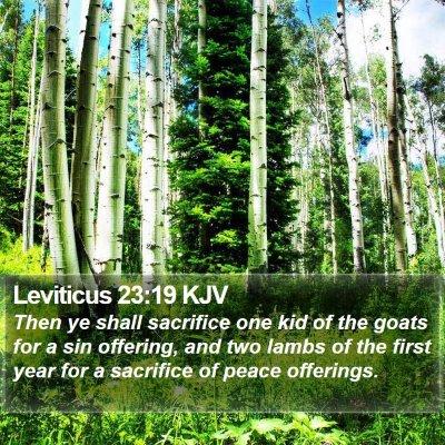 Leviticus 23:19 KJV Bible Verse Image