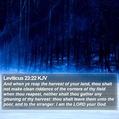 Leviticus 23:22 KJV Bible Verse Image