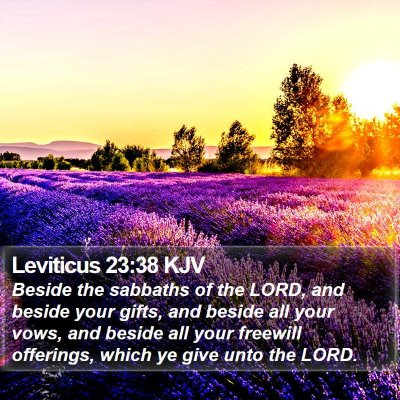 Leviticus 23:38 KJV Bible Verse Image