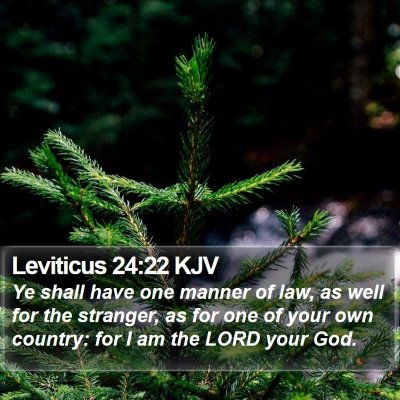 Leviticus 24:22 KJV Bible Verse Image