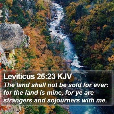 Leviticus 25:23 KJV Bible Verse Image