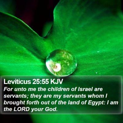 Leviticus 25:55 KJV Bible Verse Image