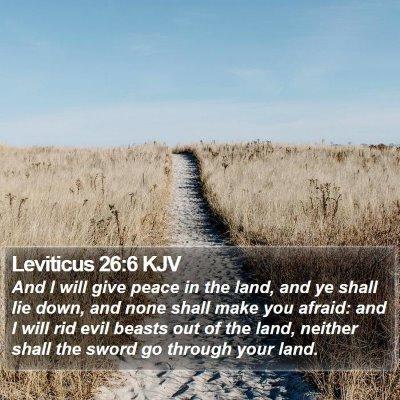 Leviticus 26:6 KJV Bible Verse Image