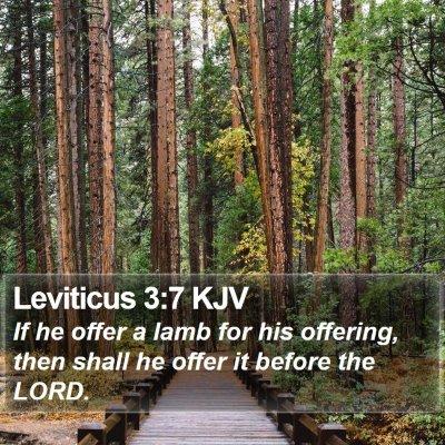 Leviticus 3:7 KJV Bible Verse Image