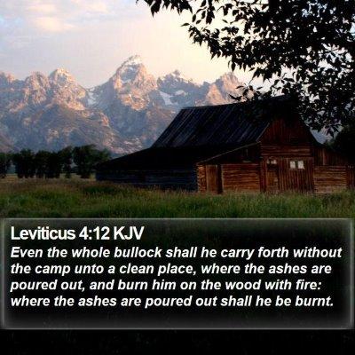 Leviticus 4:12 KJV Bible Verse Image