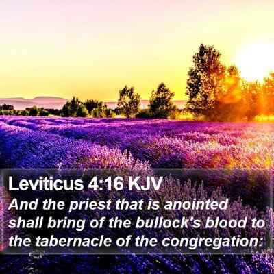 Leviticus 4:16 KJV Bible Verse Image