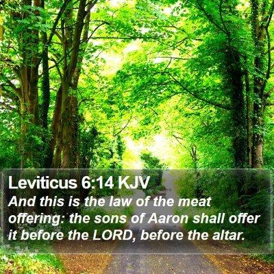 Leviticus 6:14 KJV Bible Verse Image