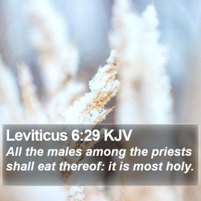 Leviticus 6:29 KJV Bible Verse Image