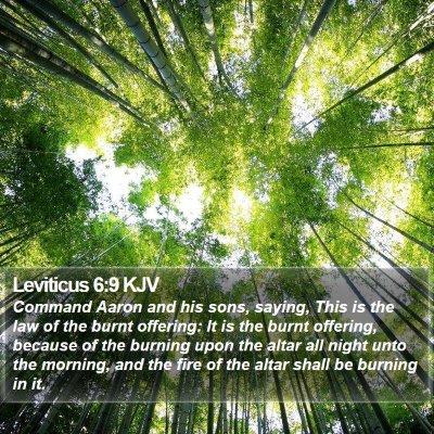 Leviticus 6:9 KJV Bible Verse Image