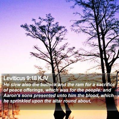 Leviticus 9:18 KJV Bible Verse Image