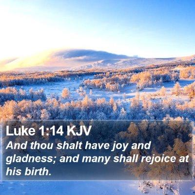 Luke 1:14 KJV Bible Verse Image