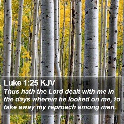 Luke 1:25 KJV Bible Verse Image