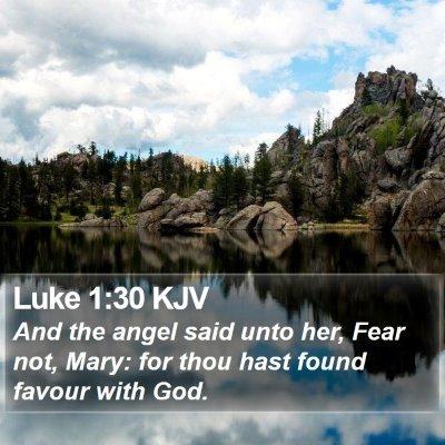 Luke 1:30 KJV Bible Verse Image