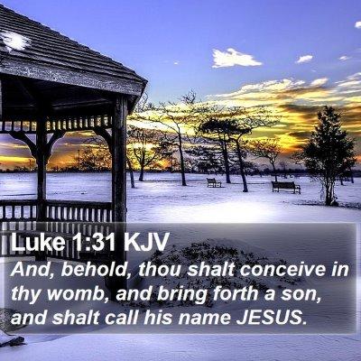 Luke 1:31 KJV Bible Verse Image