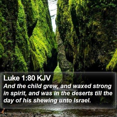 Luke 1:80 KJV Bible Verse Image