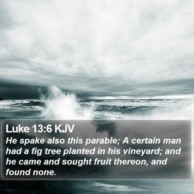 Luke 13:6 KJV Bible Verse Image
